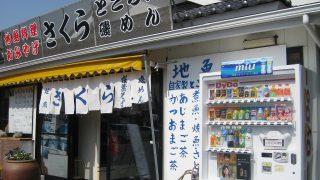 オススメ!ツーリングSpot:地魚 さくら(静岡県・賀茂郡松崎町)