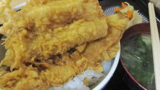 横須賀 味美食堂で美味しい穴子丼を頂きました!